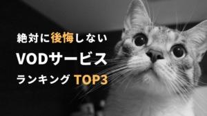【絶対に失敗しない】VOD(動画配信サービス)ランキングTOP3